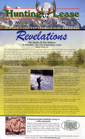 Hunting Lease Magazine - Revelations: The Depths of the Shallows