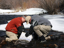 Sweetwater Macroinvertebrate Sampling