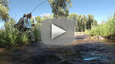 RMR - Sweetwater Created Fishery