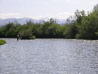 Fisheries Consulting and Management - Kremmling, Colorado