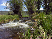 Spring Creek Design and Devlopment - Routt County, Colorado