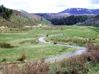 Fisheries Development and Management - Routt County, Colorado