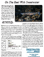 Sweetwater 2007 Newsletter 2nd Edition